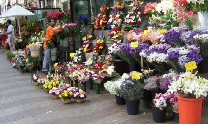 Бизнес торговля цветами